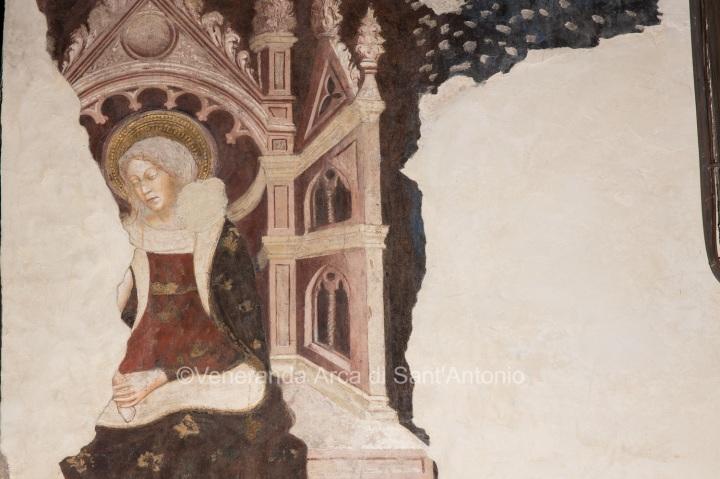 Restauro Affreschi Cappella Madonna Mora (10)