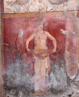 Casa dei Ceii dettaglio parete giardino